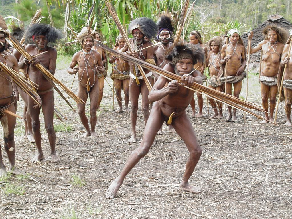Племена большие член
